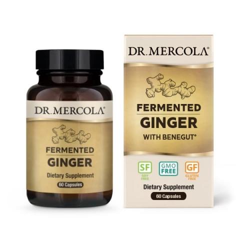 Dr. Mercola - Gefermenteerde Gember