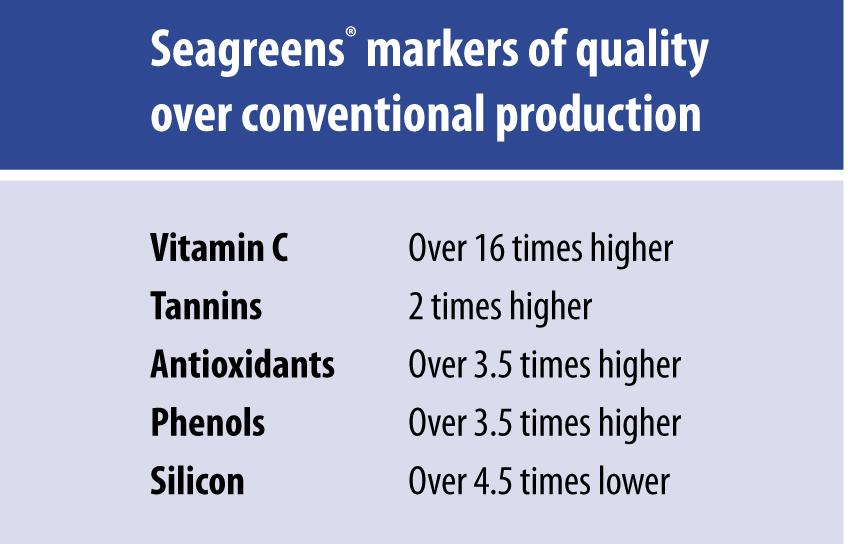 Seagreens Ergomax